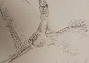 Erotisk tegning liggende mand tegnet 2018 af Lars Stounberg