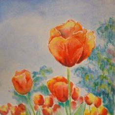 Titel: Tulipan orange akvarel 52 x 40 cm 2005 - Billedkunstner Odder Lars Stounberg