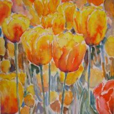 Farverig moderne akvarel - Titel: Orange-gul tulipan 52 x 40 cm 2005 - Billedkunstner Odder Lars Stounberg
