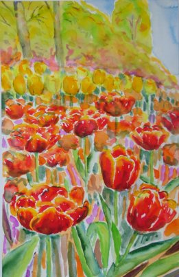 Tulip gavnoe gastle watercolours Lars Stounberg